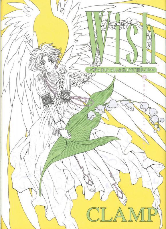 Wish - Reste toujours auprès de moi, manga chez Tonkam de Clamp