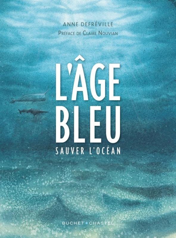 L'Age bleu, bd chez Buchet Chastel de Defréville