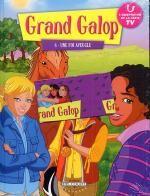 Grand galop T8 : Une foi aveugle (0), bd chez Delcourt de Collectif