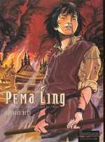 Pema Ling T2 : Les guerriers de l'éveil (0), bd chez Dupuis de Bess