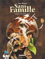 Sans famille T5 : La vache du prince (0), bd chez Delcourt de Degruel
