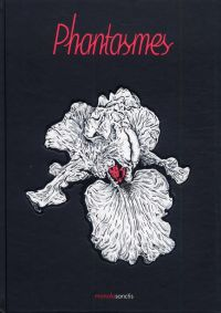 Phantasmes, bd chez Manolosanctis de Collectif
