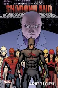 Shadowland : La chute de Daredevil, comics chez Panini Comics de Johnston, Diggle, De La Torre, Tan, Checchetto, Hollingsworth, Guru efx, Strain, Hannin, Dalhouse, Hollowell, Cassaday