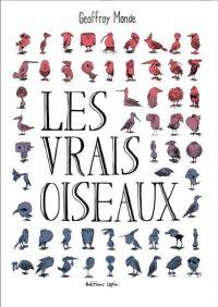 Les vrais oiseaux, bd chez Editions Lapin de