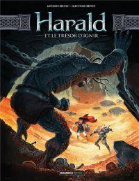 Harald et le trésor d'Ignir T2, bd chez Bamboo de Brivet, Brivet