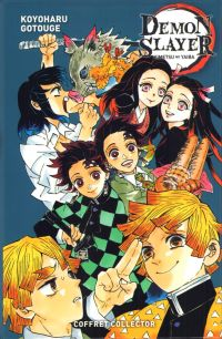 Demon slayer T17, manga chez Panini Comics de Gotouge