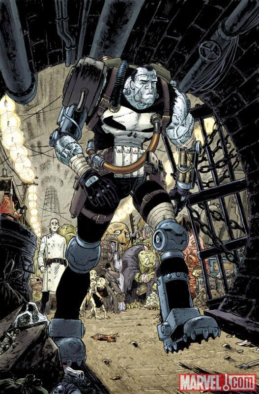 Marvel Saga – V 1, T8 : Punisher - Frankencastle (0), comics chez Panini Comics de Remender, Boschi, Brereton, Moore, Loughridge, Brown, Mckone