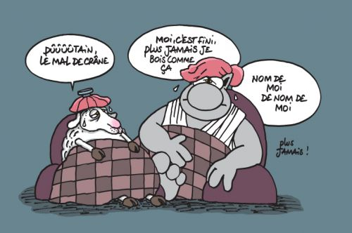Le chat T18 : La Bible selon le chat (0), bd chez Casterman de Geluck