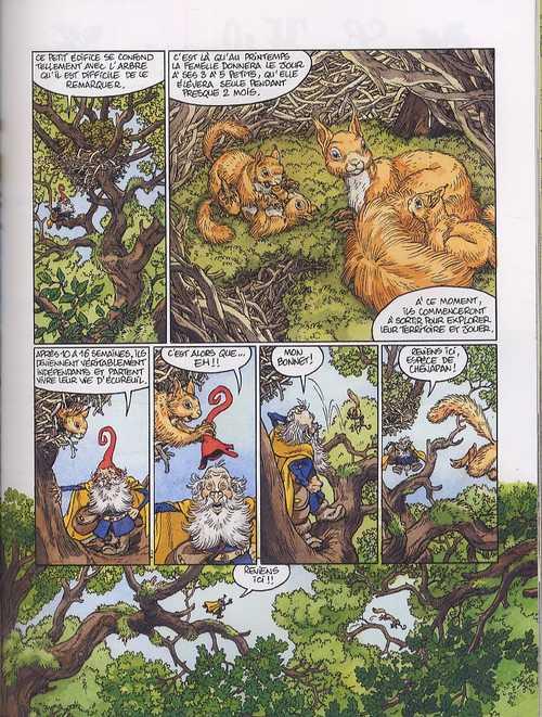 Séraphin et les animaux de la forêt, bd chez Delcourt de Chauvel, Lereculey, Louise