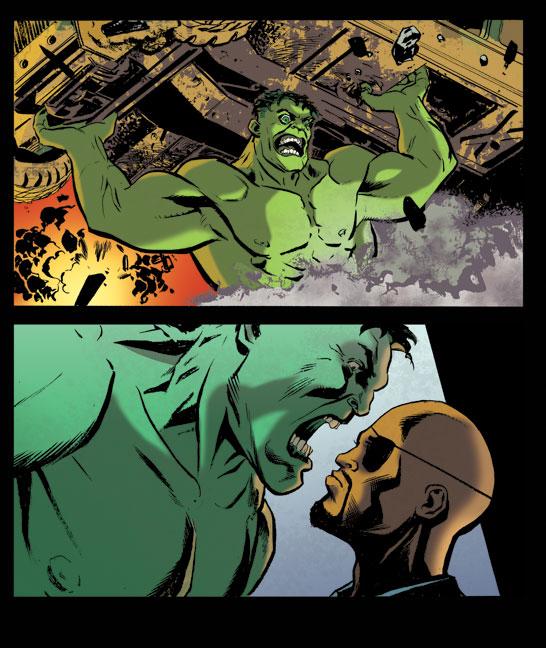 hulk steve lieber nick fury